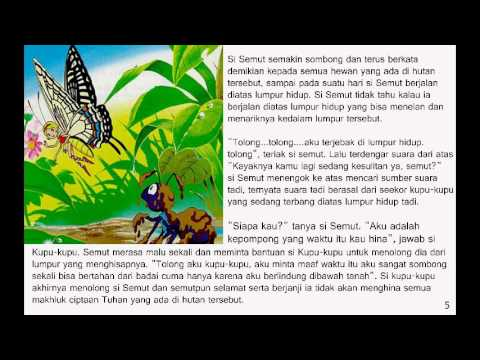 Kisah Semut Dan Kepompong Youtube