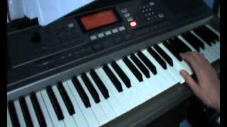 Vinder Fra en Ensom Grav (Dimmu Borgir keyboard cover)