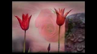 Beni Hatırla (SELMAN) - ÇOBAN YILDIZI Katkılarıyla . . .