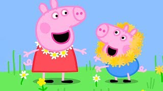 Download Peppa Pig Official Channel | Peppa Pig's Fun Time with Cousin Chloe Mp3 and Videos