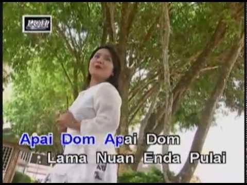 Apai Dom