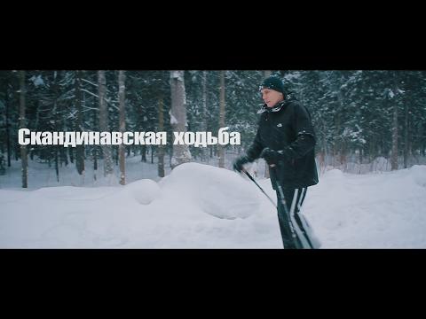 Как правильно заниматься скандинавской ходьбой пожилым