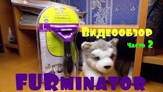 fURminator. Видеообзор. Как правильно выбрать оригинальный ФУРминатор. Часть 2