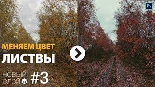 Новый слой #3: Меняем цвет листьев на деревьях в Photoshop