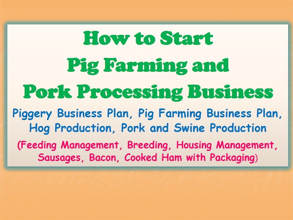 pig farming business plan documentation