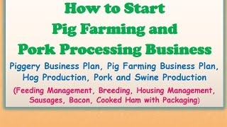 How to Start Pig Farming and Pork Processing Business, Piggery Business Plan