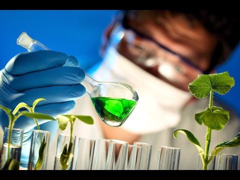 Finding Jobs for Canada's Bio-economy - Biotalent Canada