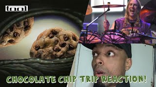 Tool Chocolate Chip Trip REACTION! Insane drummer!!