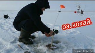 ЗиМнЯЯ РыБалЛКа озеро КОКАЙ заповедник Не ожидали такого Fishing казахстан