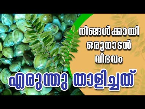 Erundhu Thalichathu Curry | Naden Thalippu Recipe 2020 |Clam Curry|#sknaturalvlogs| #5_minutes_curry
