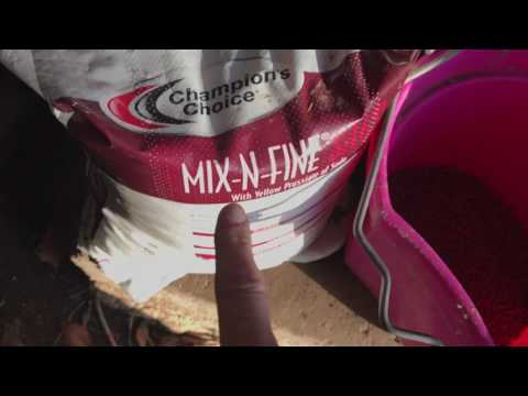 Making Horse Feed Buckets