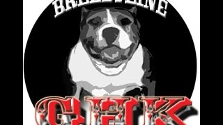 Largest pitbull in the world www.ghousekennels.webs.com GHK's Bravo