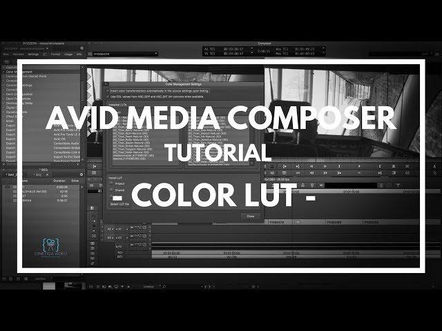 TUTORIAL #1 Media Composer - Utilizzare le LUT color -