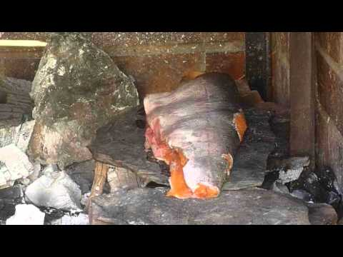 How to roast a fish on a stone - Primitive Skills