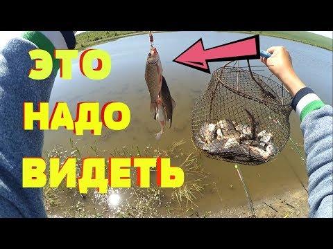 УБИЙЦА КАРАСЯ !!! НЕ УСПЕВАЮ ЗАБРОСИТЬ !!! Супер Рыбалка !!!