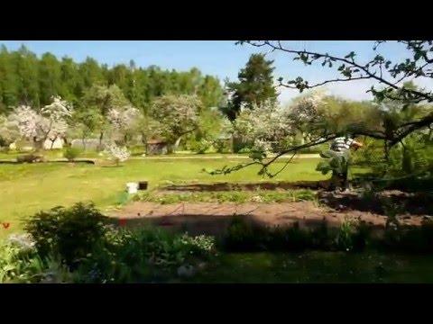 Panevėžio sodas