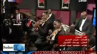 محمود عبدالعزيز - الوداع