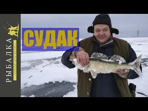 ловля судака на уклейку на финском заливе