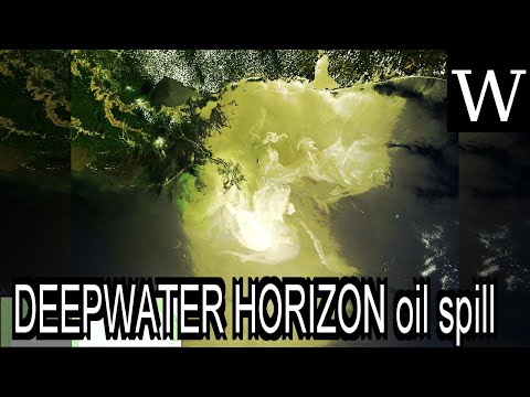 DEEPWATER HORIZON oil spill - Documentary