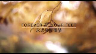 Forever at your feet/永相随/oh susanna