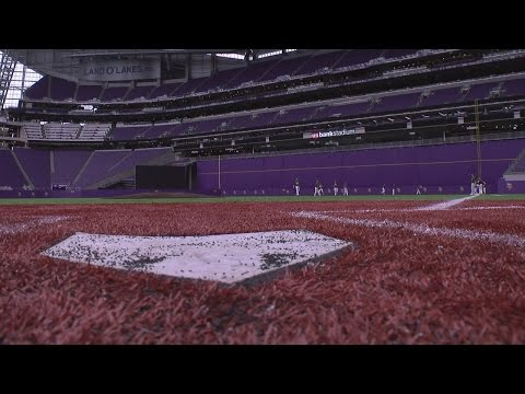 For Young Players, Metrodome Baseball Tradition Lives On At U.S. Bank Stadium