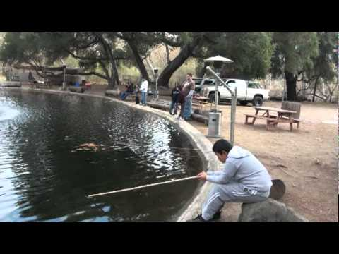 Trout Fishing In California 12-11-2011.mpg