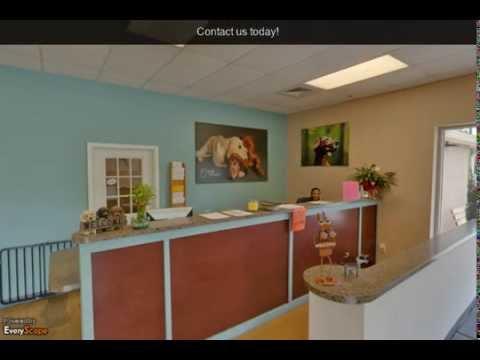 Furniture Village Apex doggie village apex | apex, nc | kennels - youtube