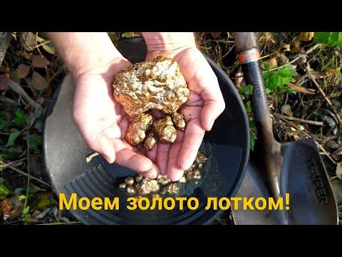 Золото лотком (правила промывки)