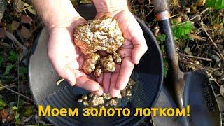 #Золото_лотком (правила промывки) Gold Panning