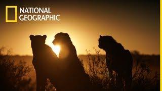 Przedziwna Planeta Ziemia - w kwietniu na National Geographic