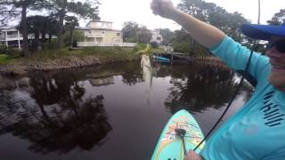 couple trout on Eastern lake 30A YOLO sup Paddle Board KastKing