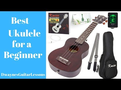 learn-what-the-best-ukulele-is-for-beginners
