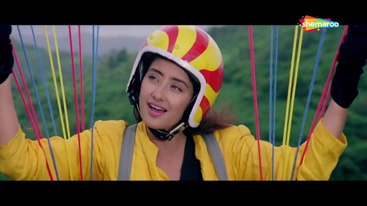 शाहरुख़ खान का सुपरहिट गाना सालिना...हम दो पंछी - Guddu Movie - Hum Do Panchhi Ude Hawa Mein