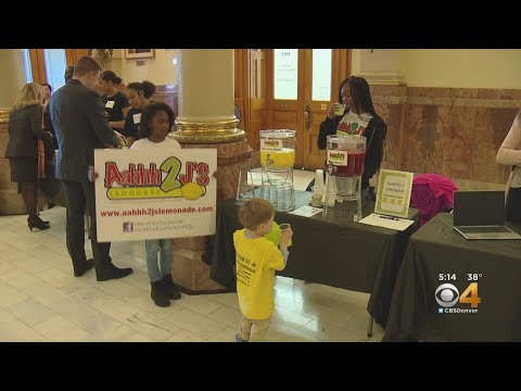 BEARDO - New Bill Could Allow For Kid Businesses