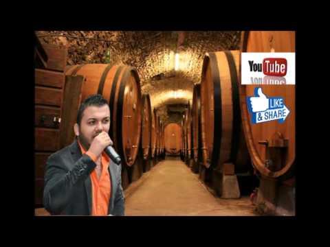 Denis Ramniceanu-A zis tata catre mine Muzica populara Buzau-Rm.Sarat