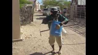 Pot-pourri haïtienne