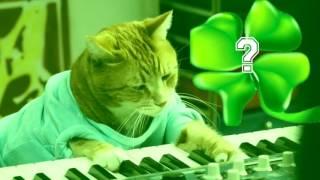 Keboard Cat is Irish?