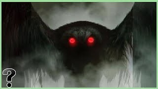 What If The Mothman Was Real?