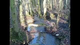 Bachspaziergang von Vlotho-Hollwiesen nach Vlotho-Wehrendorf