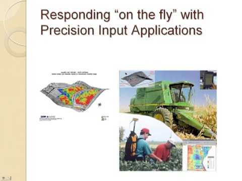 Precision Agriculture: The Strategic Future of Animal Production