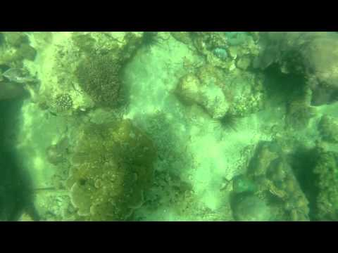 Thajsko - Marine Park 1