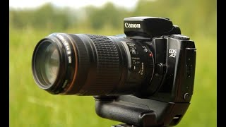 фотоаппарат CANON A2 / нелепый обзор