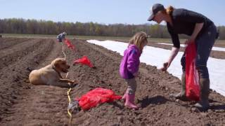 Wisconsin's Homegrown Farmer:  Wisconsin Public Television Special