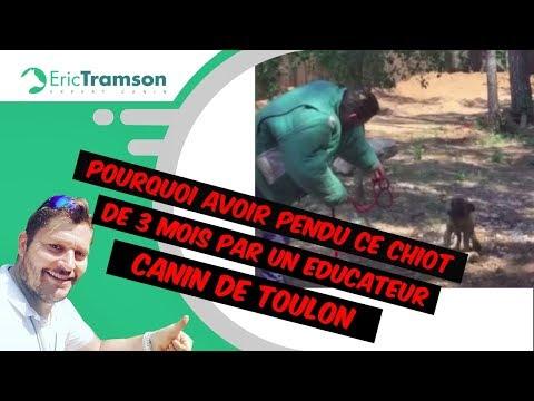 Moana - How Far I'll Go (French version)de YouTube · Durée:  2 minutes 59 secondes