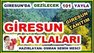 Giresun Yaylaları, Giresun'da Gezilecek 101 Yayla, Giresun Tanıtım, Giresun - Turkey mp3 indir