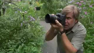 macro photography tips with roy toft