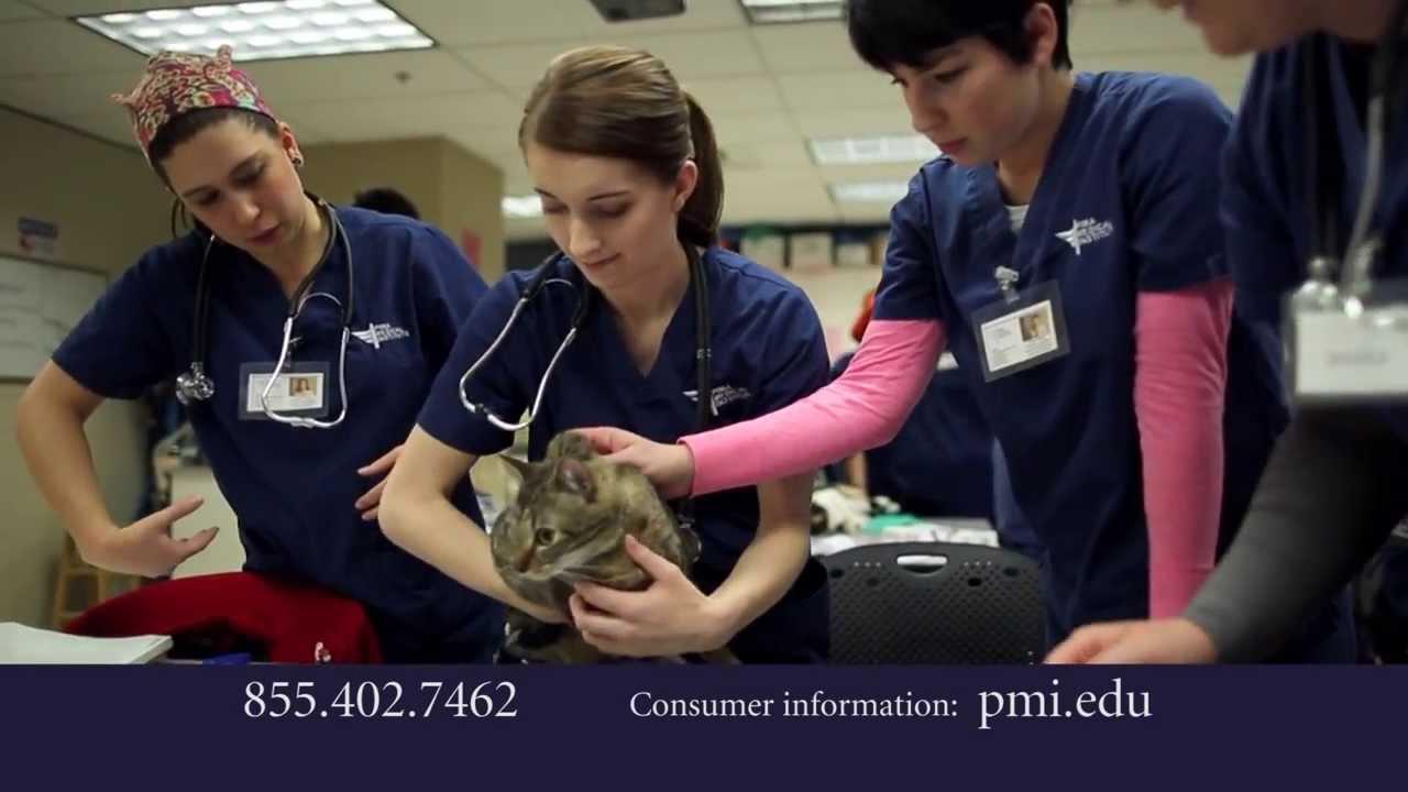 Mikaila Waltz Story Veterinary Assistant Student Pima Medical