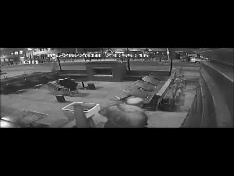 Surveillance video of art gallery robbery