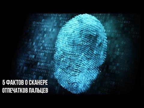 5 фактов о сканере отпечатков пальцев, которые вы могли не знать.