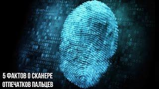 5 фактов о сканере отпечатков пальцев, которые вы могли не знать